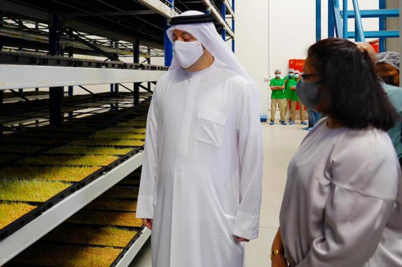 Al AliyoHydroFarms embarks on hydroponic fodder project in Hamriyah Free Zone with investments worth AED9m