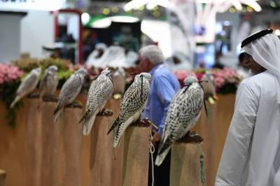 ADIHEX's 18th edition to be extended to 7 days International Fair
