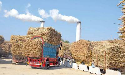 CCP CONDUCTS SEARCH & INSPECTION OF A SUGAR MILL GROUP HEAD OFFICE