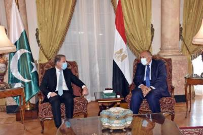 Foreign Minister Makhdoom Shah Mehmood Qureshi meets his Egyptian counterpart Sameh Shoukry in Cairo