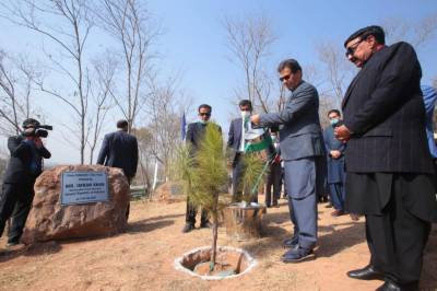 The government is taking all possible steps to make the country green and prosperous, Prime Minister Imran Khan said