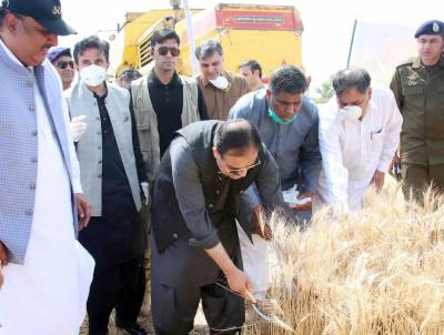 CM INAUGURATES WHEAT PROCUREMENT CAMPAIGN 2020